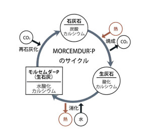 MORCEMDUR-Pのサイクル